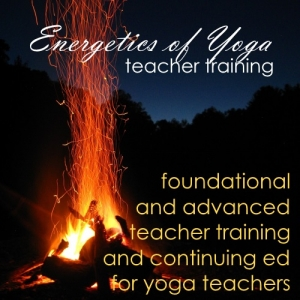 Energetics of Yoga Teacher Training