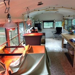 turtle rehabilitation clinic in an old school bus