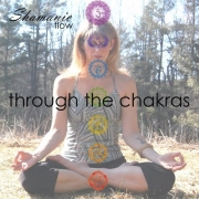 Shamanic Flow Through the Chakras workshop